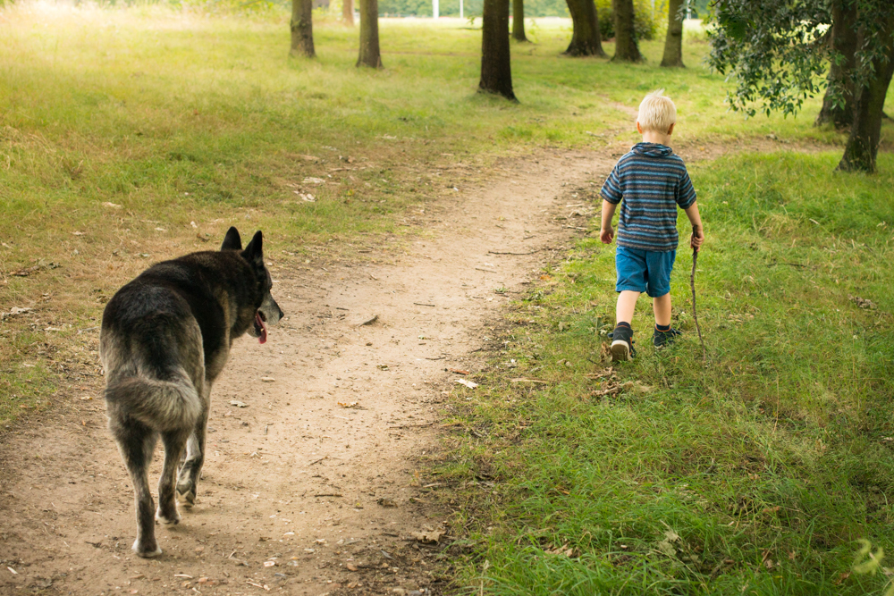 Kids and pet's love – 5 reasons you need a dog